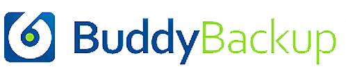 backupBuddy implementatie partner