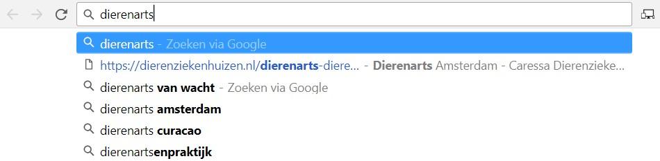 Google denkt met je mee voor zoekwoorden opties